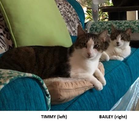 2019-january-timmy-left-bailey